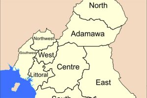 Read more about the article THE INTERNATIONAL COMMUNITY'S MASTER PLAN TO INTERVENE IN BRITISH CAMEROON REVEALED by Prince Akame