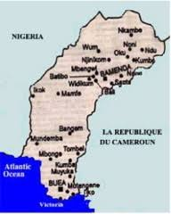 Read more about the article The Illusiveness of some Cameroonians by Dr. Edwin Bongaman Lukong