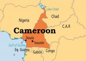 Read more about the article THE UN 2019 HUMANITARIAN RESPONSE PLAN FOR CAMEROON as published by Mbiydzenyuy David WANTANGWA