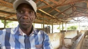 Read more about the article Olympic superstar Eliud Kipchoge visits his farm – on his own – as he trains in isolation