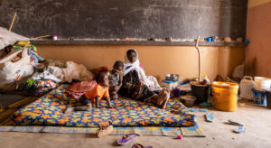 Read more about the article Protect civilians in the Sahel and Lake Chad regions, urges UN refugee agency