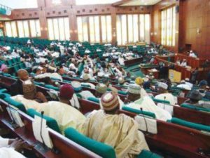 Read more about the article Nigerian Lawmakers Accuse NDDC Of Unauthorised Spending, Failure To Present Performance Records