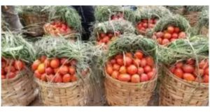 Read more about the article Cameroon: Tomato farmers commit suicide as  market prices plummet