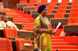 Read more about the article Married Underage Girls Not Adults, They Shouldn't Be Allowed to Vote – Senator Olujimi