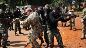 Read more about the article THE ARMY CANNOT DEFEAT THE SECESSIONIST By Dieudonné Essomba