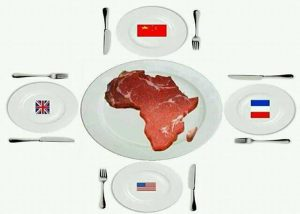 Read more about the article Africa: What A Sumptuous Meal for Greedy Westerners