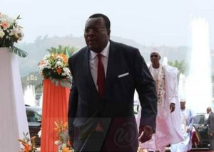 Read more about the article The Cameroons: Again the Pitiable Insanity of Government Surrogates