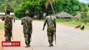 Read more about the article Mozambique jihadists seize key town in Cabo Delgado