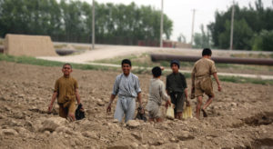 Read more about the article Coronavirus casts 'huge shadow' over Afghan life as multi-dimensional crisis continues |
