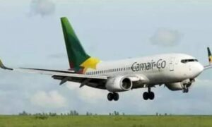 Read more about the article Cash crunch at Camair-co: 130 workers axed