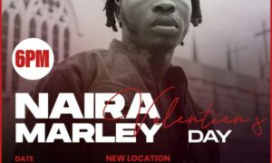 Read more about the article Breaking: Naira Marley concert banned by government authorities
