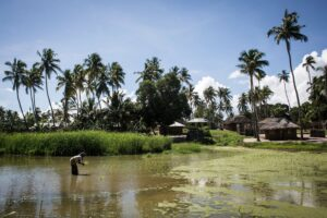 Read more about the article Mozambique: Protect Residents Fleeing Northern Town