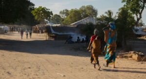 Read more about the article Thousands on the move after brutal attacks in northern Mozambique, UN office reports |