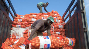 Read more about the article New UN-backed framework to boost agricultural trade between African nations |
