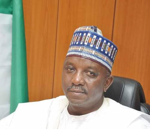 Read more about the article Doctors Advised I Needed Rest After Buhari Sacked Me — Ex-Minister Of Power, Mamman