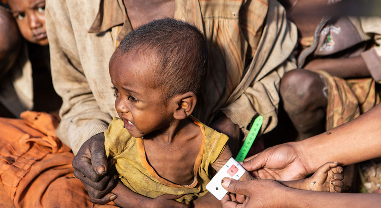 Read more about the article Madagascar: Severe drought could spur world's first climate change famine |